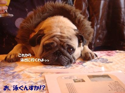 PMBS8740_20120701113537.jpg
