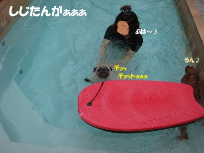 PMBS8824.jpg