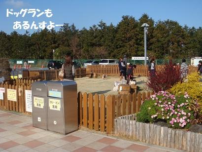 PMBS9638.jpg