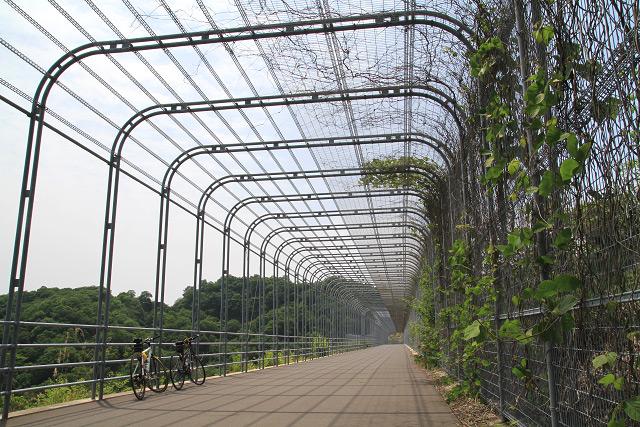 広島空港 中央森林公園-サイクリングロード