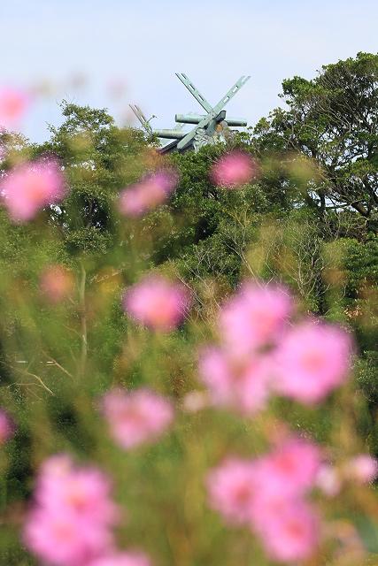 山陰本線 JR 鉄道写真