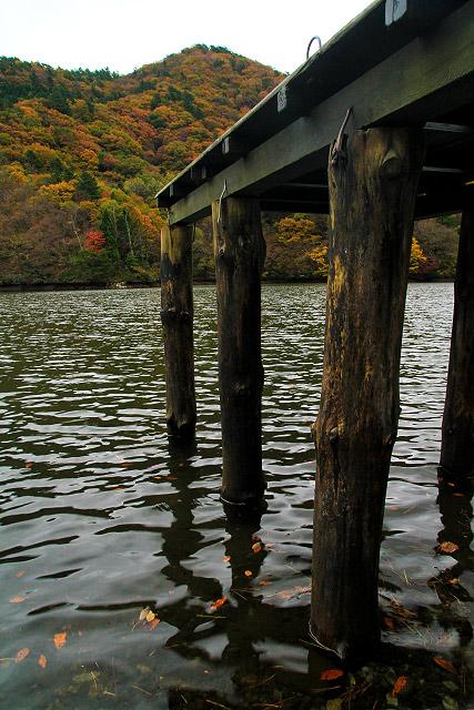 大山 大野池の紅葉