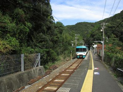 2014-1108_taiji01.jpg