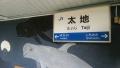 2014-1108_taiji05.jpg