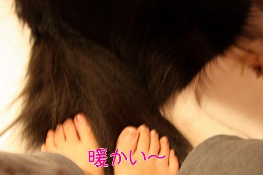 201111114.jpg