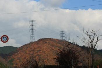 201111203.jpg