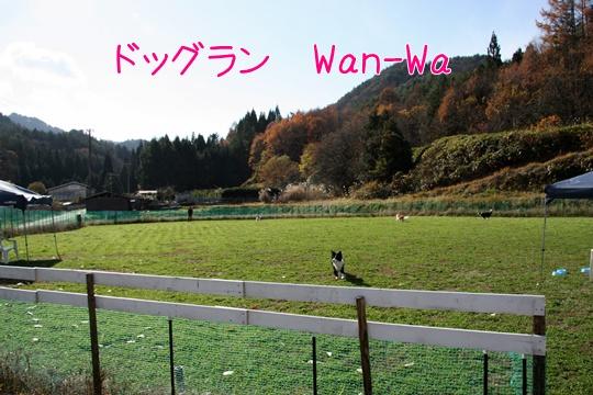 201111208.jpg