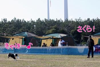 20111224-2519.jpg