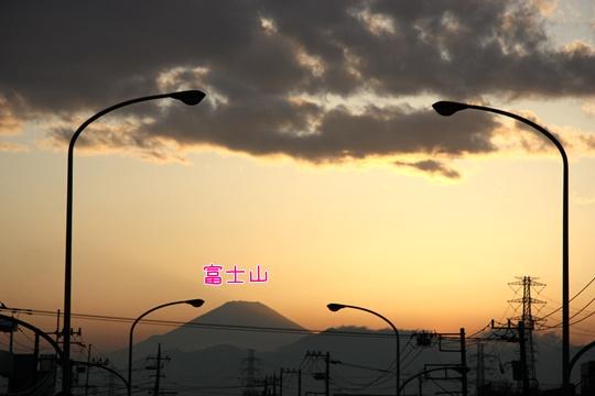 201203247.jpg
