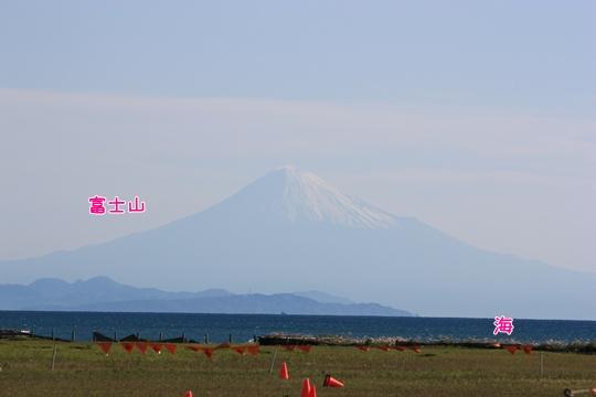 20120414293.jpg