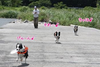 2012061013.jpg