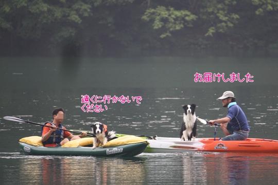 201207141572.jpg