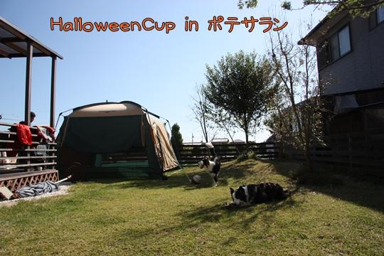 201210301.jpg