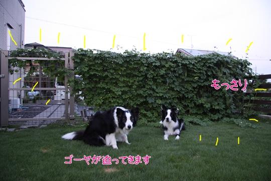 2012_09_043.jpg