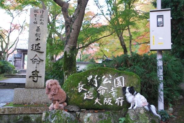 延命寺石碑で記念撮影