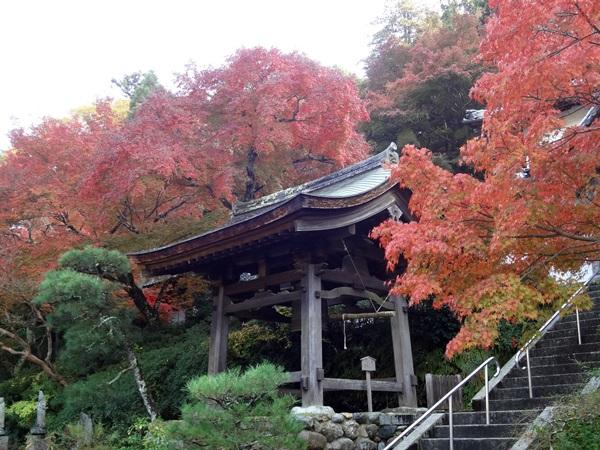 延命寺釣鐘と紅葉