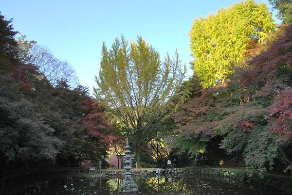 延命寺池のまわりの景色