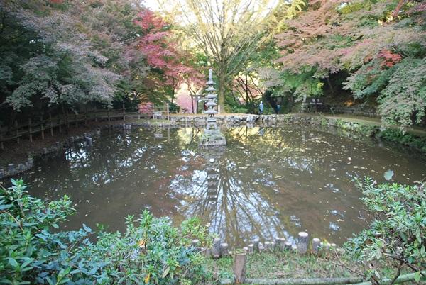 池の水鏡に映った紅葉