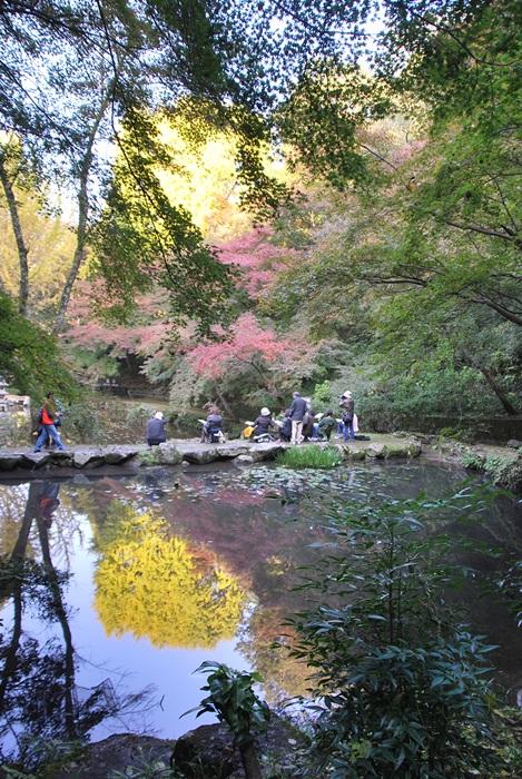 池の水鏡に映った紅葉2