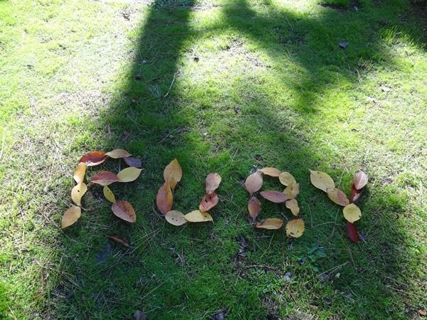 葉っぱでルビー2
