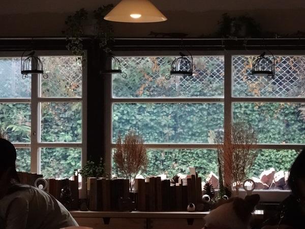 カフェ窓の外の景色