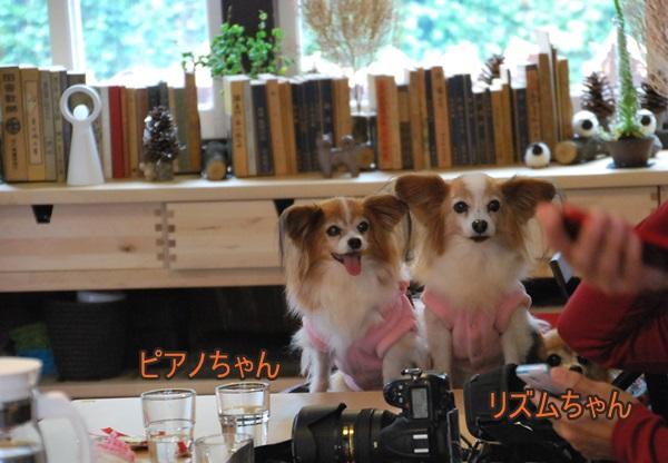 カフェでピアノちゃん&リズムちゃん