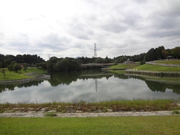 亀山PAの池