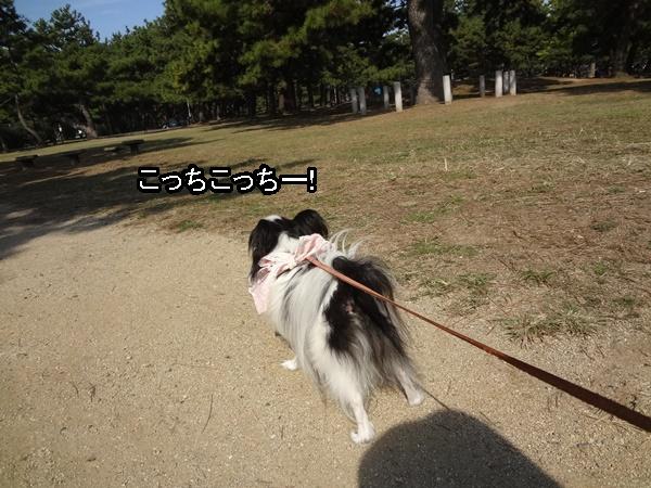 歩く気マンマン