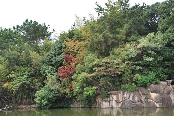 高砂公園2