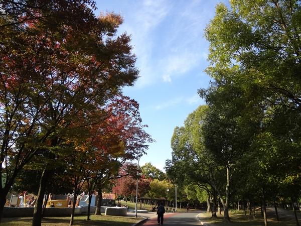 久宝寺緑地の木々