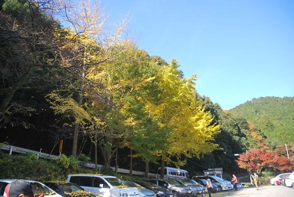 犬鳴山駐車場