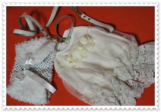 クリスマス衣装1