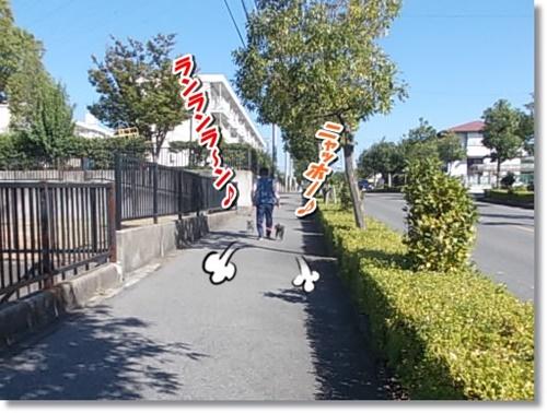 DSCN8310.jpg
