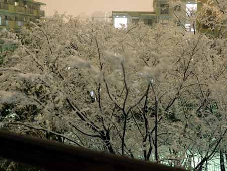雪のバレンタイン