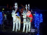 メリ-クリスマス