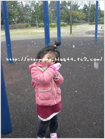 CIMG4855-0.jpg