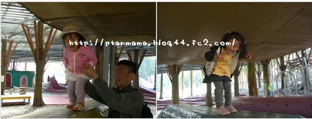 CIMG5225-0.jpg