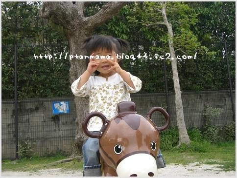 CIMG5421-0.jpg