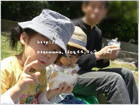 CIMG5437-0.jpg