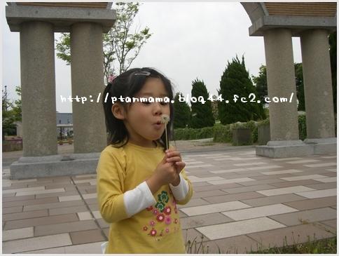 CIMG5460-0.jpg