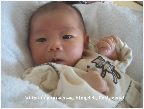 CIMG5618.jpg