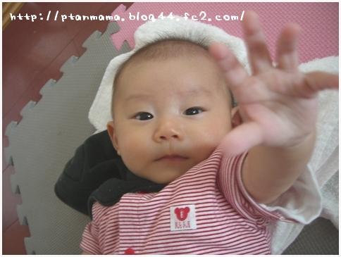 CIMG6231.jpg