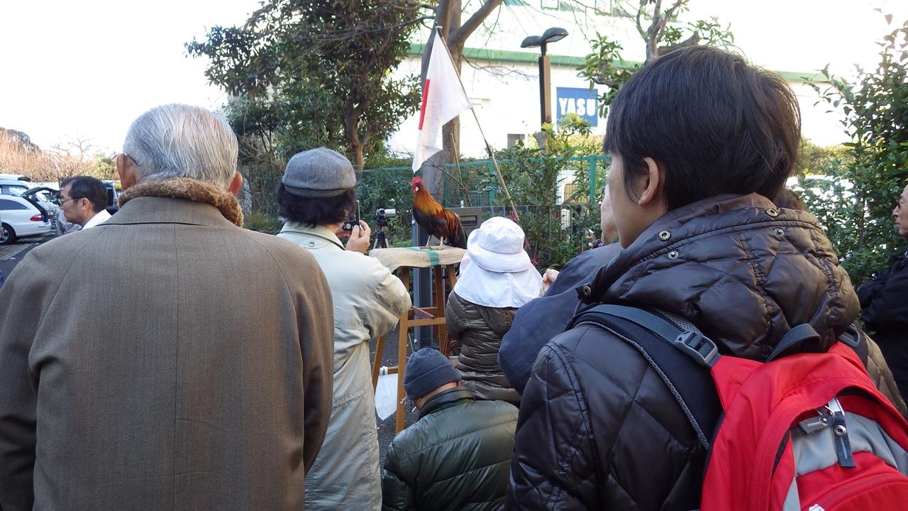 初鳴き会20140101-9