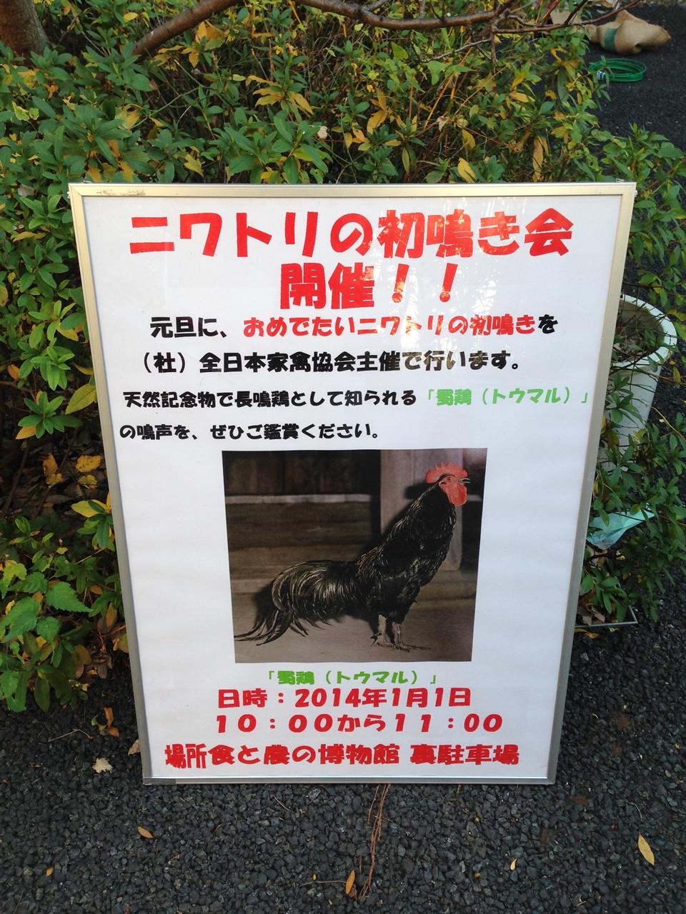 初鳴き会20140101-1