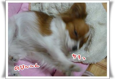 P112055911.jpg