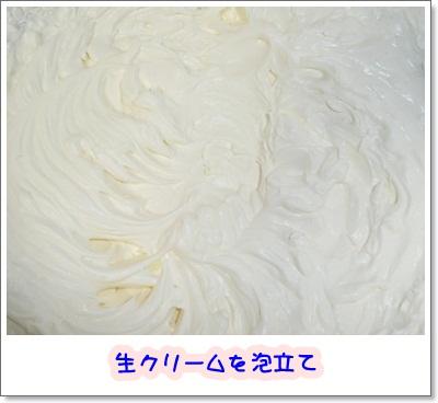 P11902482.jpg