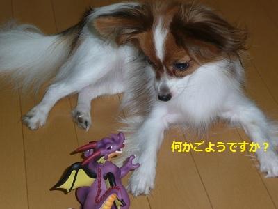 P20110729421.jpg