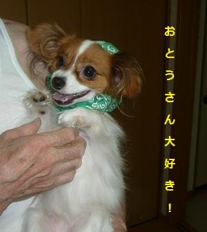 P20110731141.jpg