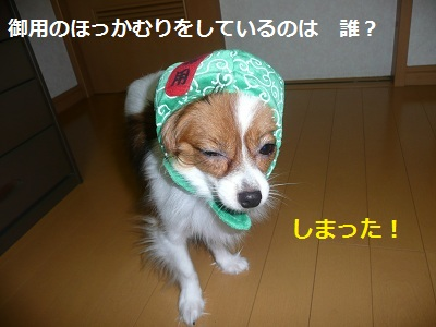 P20110731481.jpg