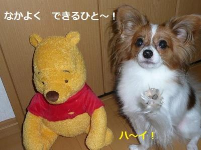 P2011090321.jpg